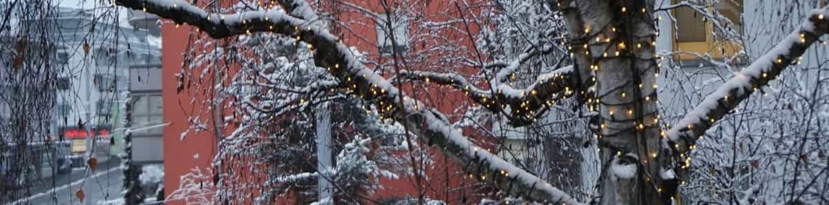 Weihnachtslichter-Blog